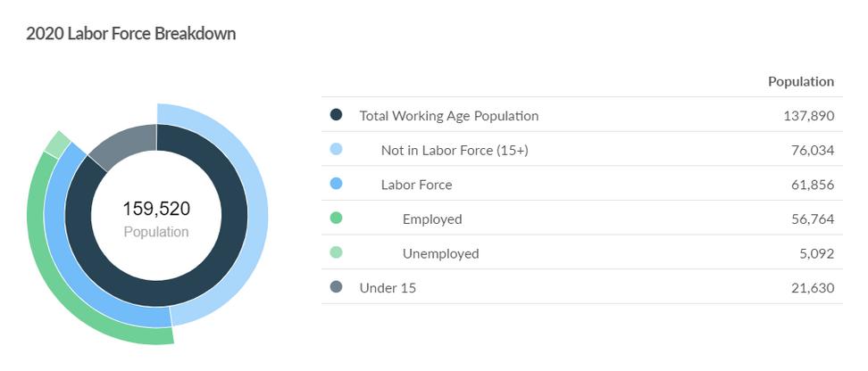 2020 Labor Force Breakdown (1).png
