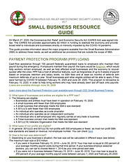 Pages from Cal Co ECD Small Business Res