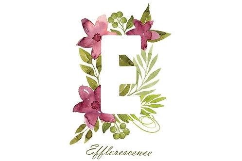Efflorescence Custom blends