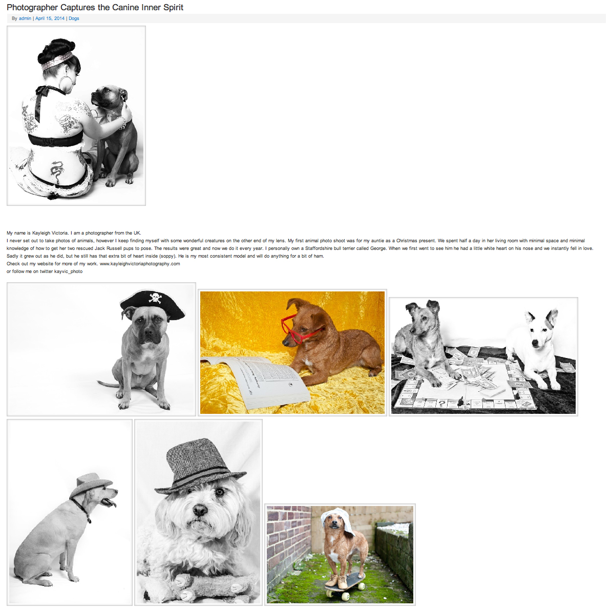 Online Editorial For Pet Radio Show
