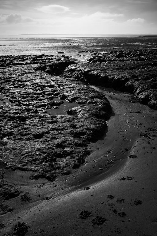 LOW TIDE IN FEBRUARY AT DOVERCOURT,