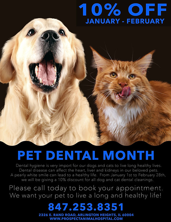 up-to-10%-off-1_pha-2018-dental-Jan_Fab.