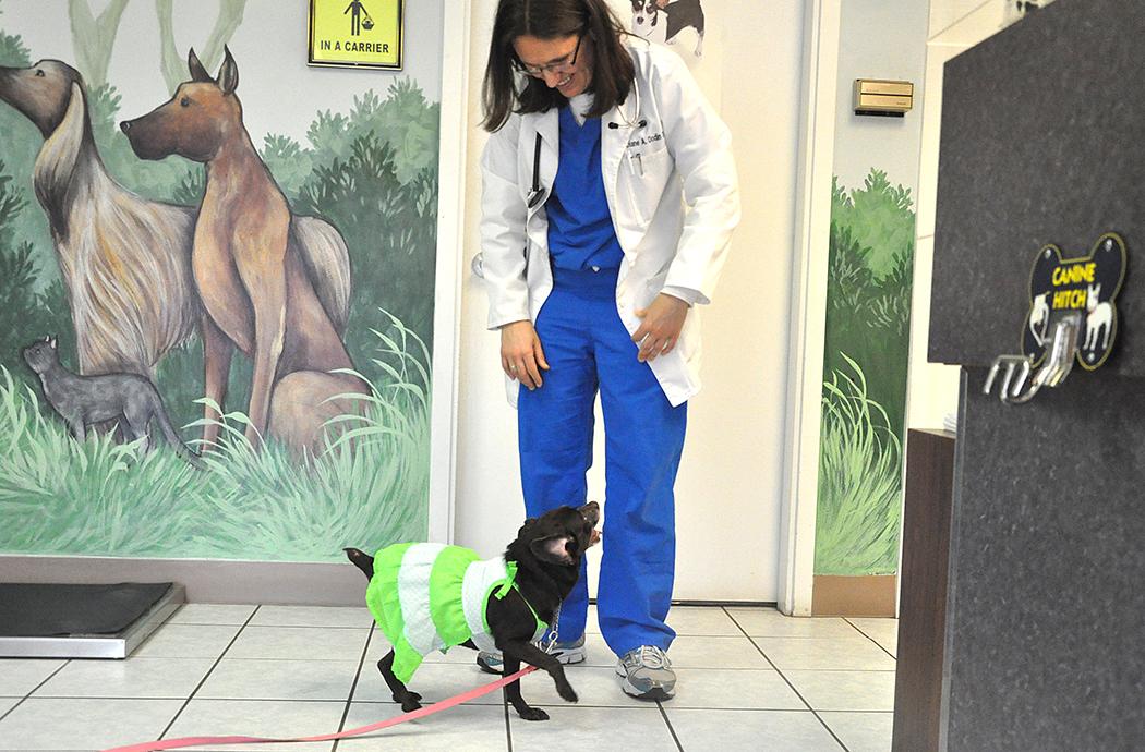 Coco & Dr. Dodin