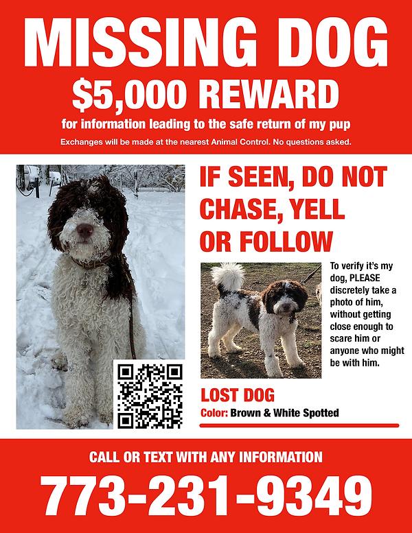 Lost Dog- 5000_Reward_8.5x11.png