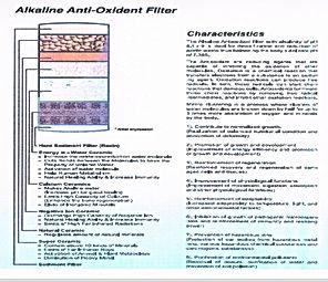alkaline water filtration system
