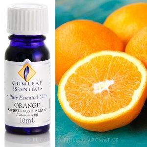 Orange Sweet Valencia