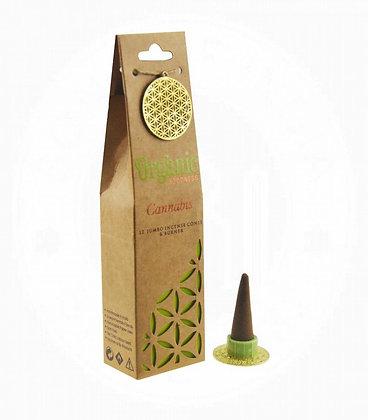 Organic Cannabis cones