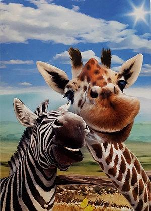 Giraffe & Donkey