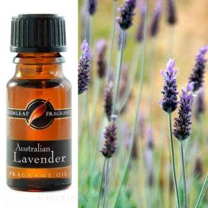 Australian Lavender