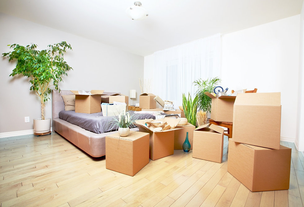 Moving boxes in new house. Real estate c