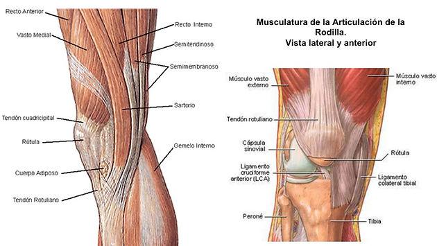 tendinitis en el gemelo interno