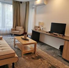 Elite Suite living room.jpg