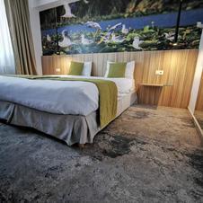 Danube Delta Room.jpg