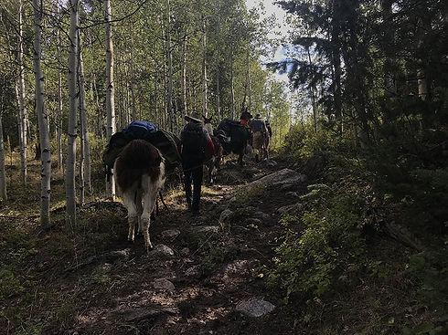 thumb-guide-treks-cotton-wood-trail.JPG