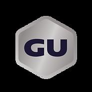 GU Inverse Logo (1).png