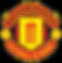 UEFA USA LOGO