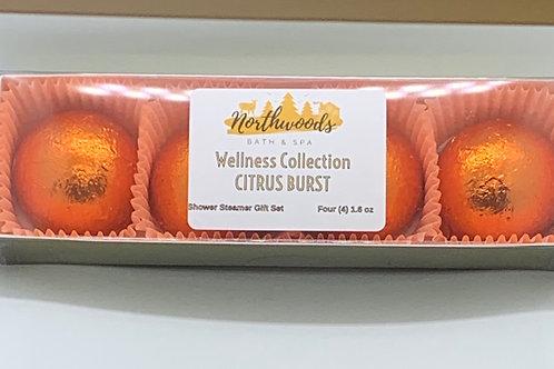Citrus Burst 4-pack Shower Steamer Gift Set