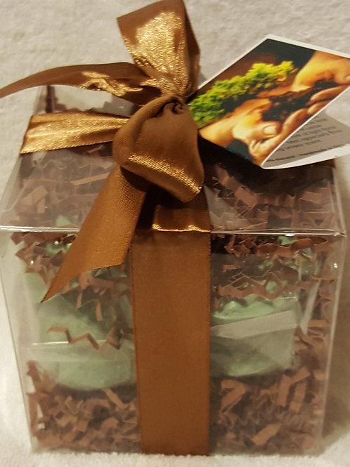 Bonsai 14-pack Bath Bomb Gift Set