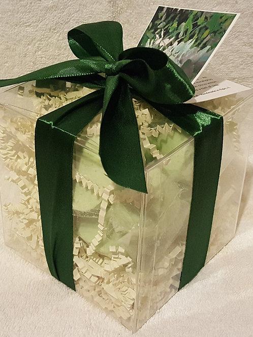 Eucalyptus & Spearmint 14-pack Bath Bomb Gift Set