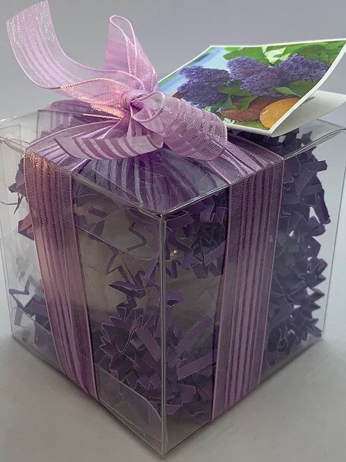 French Lilac 5.5 oz Bath Bomb Gift Set