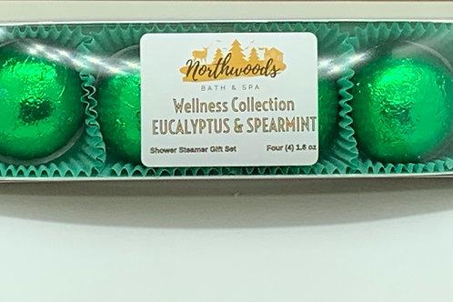 Sale! Eucalyptus & Spearmint 4-pack Shower Steamer Gift Set