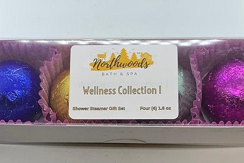 Wellness Collection I 4-pack Shower Steamer Gift Set