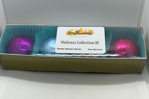 Wellness Collection III 4-pack Shower Steamer Gift Set