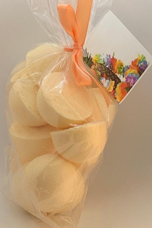 Caribbean Coconut 14-pack Bath Bomb Fizzies