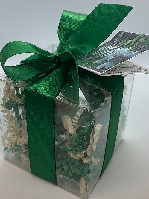 Eucalyptus & Spearmint 5.5 oz Bath Bomb Gift Set (b)