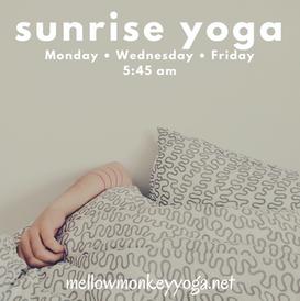 sunrise yoga 2019.png
