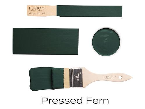 Pressed Fern