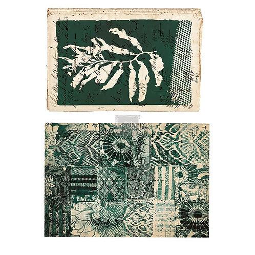 Algae Print