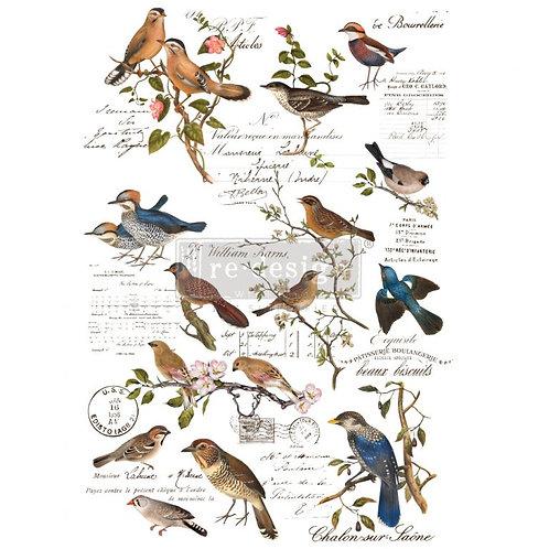 Decor Transfer-Postal Birds