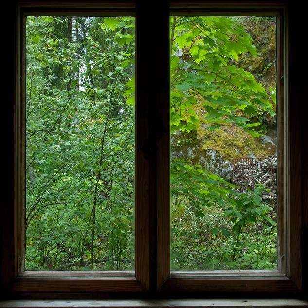 through sauna window