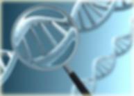 Анализ ДНК Караганда