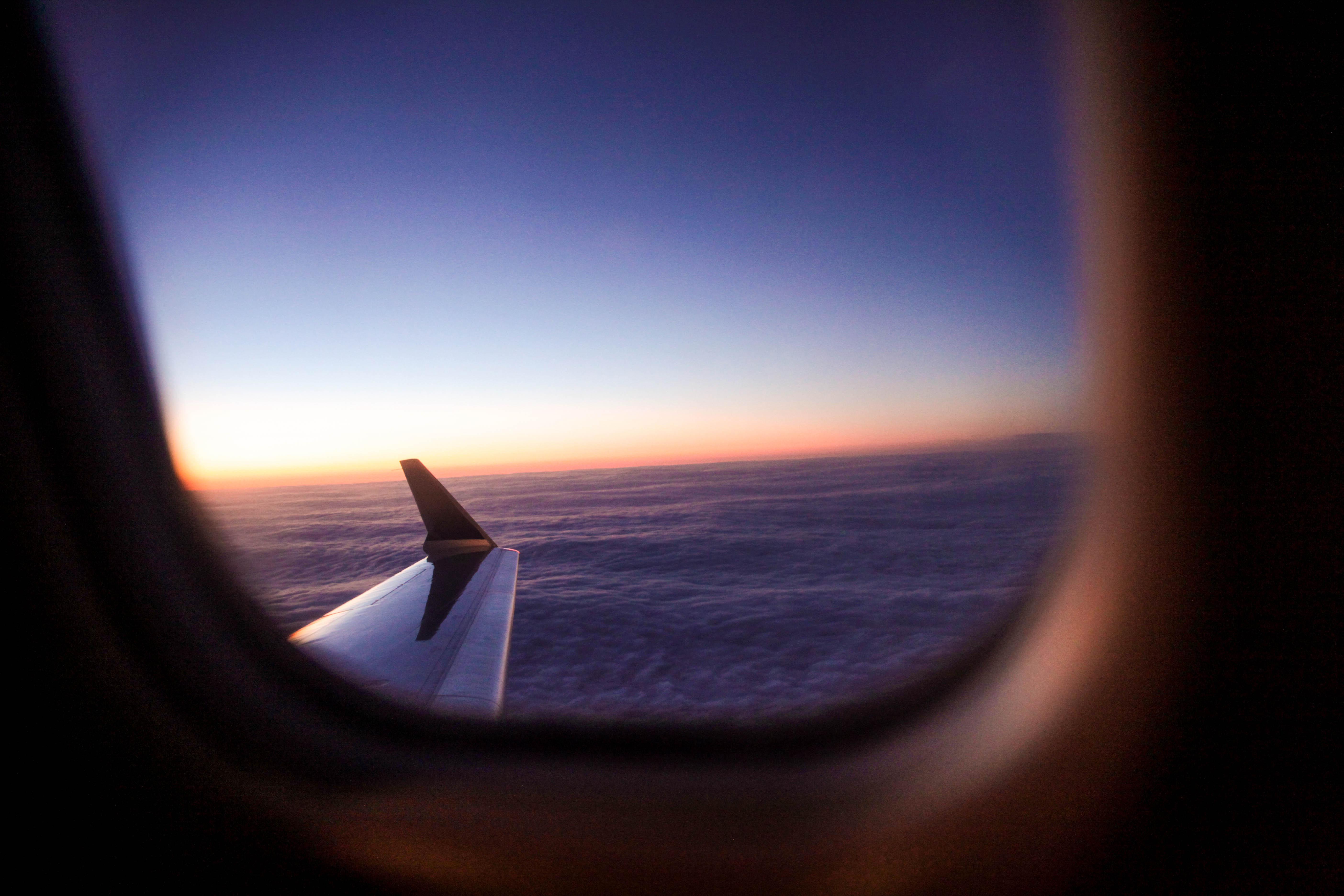wing-1.jpg