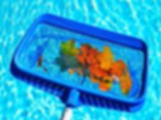 Skimming-Pool.jpg