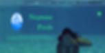 FireShot Capture 110 - Home - Neptune Po
