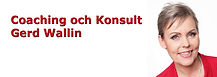 logo_coachingochkonsultHG.JPG