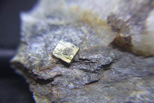 Pyrite, cristaux cubiques en matrice