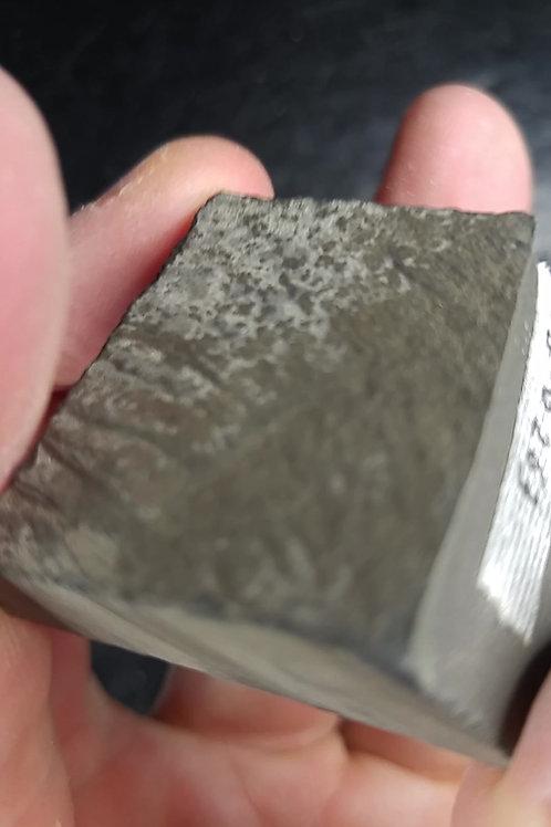 Trilobite Triarthrus Aetoni (Fossile Pyritisé), St-Honoré, Saguenay-Lac-St-Jean