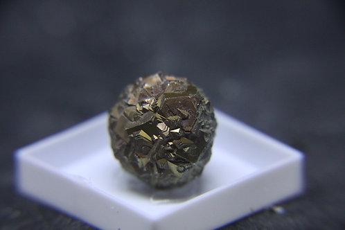 Pyrite (nodule), fleuve St-Laurent, Québec