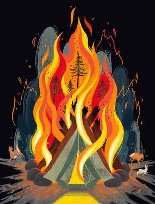Campfires and Wildfires (2020)