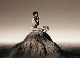 L'accompagnamento empatico alla fine della vita del nostro animale: l'importanza della conoscenza di