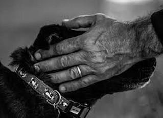 Accompagnamento empatico alla fine della vita: la differenza tra accanimento terapeutico e cure pall