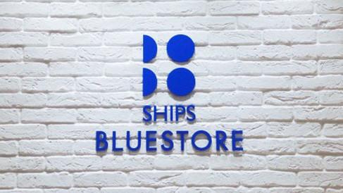 """SHIPS """"BLUESTORE"""" VI"""