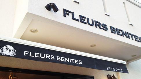 FLEURS BENITES VI
