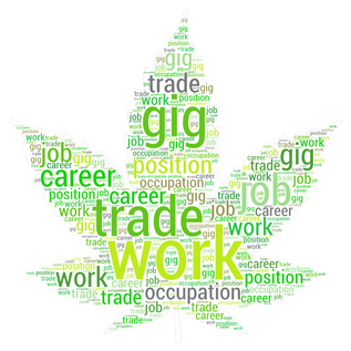Legalized Cannabis = High(er) Employment