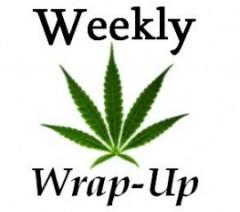 Weekly Wrap Up: Jan. 6, 2017