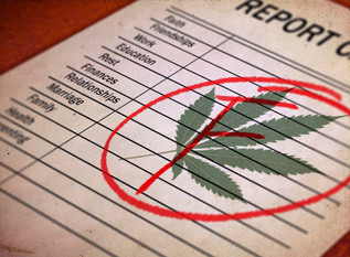 36 Percent of States Bomb Annual Medical Marijuana 'Report Card'